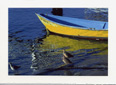 Yellow Blue Boat